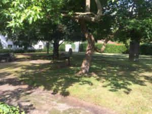 kleiner Skulpturengarten des Hauses Coburg, Foto: Redaktion